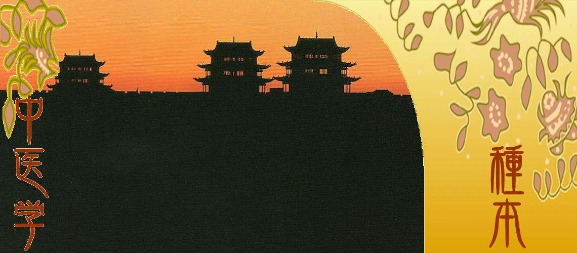 中国伝統医学