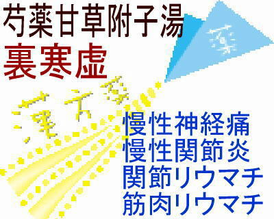 JPS 芍薬甘草附子湯