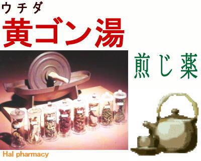 ウチダ 黄芩湯 煎じ薬