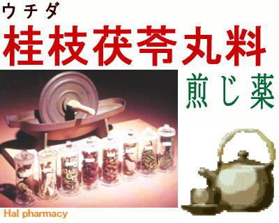 ウチダ 桂枝茯苓丸料 煎じ薬