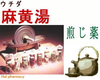 ウチダ 麻黄湯 煎じ薬