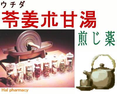 ウチダ 苓姜朮甘湯 煎じ薬